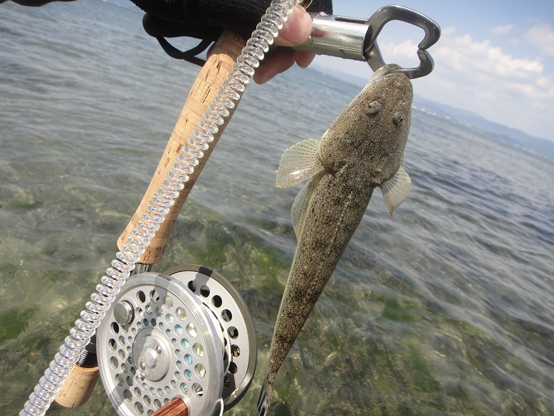 村櫛海岸で釣り