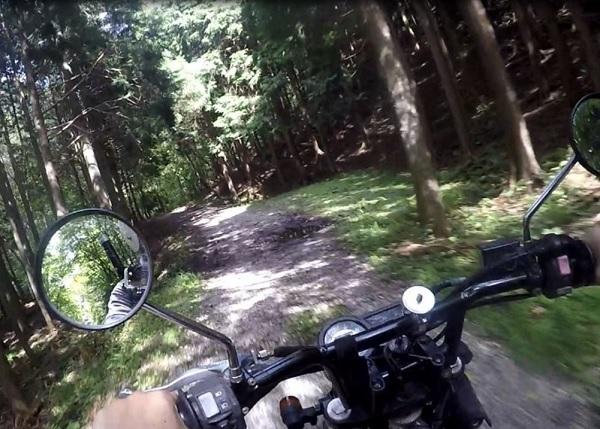 林道をバイクで通る