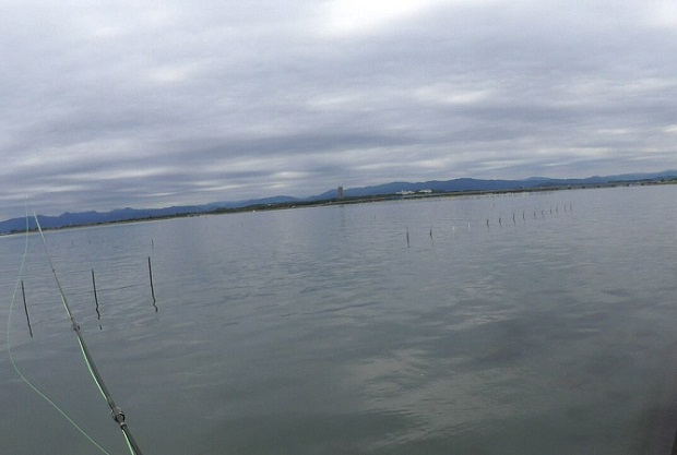 渚園の周辺の海で釣り