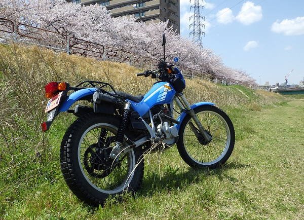 TL125 jd06 桜を背景に