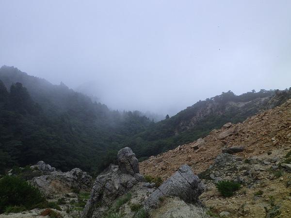 三ツ口谷登山道の様子
