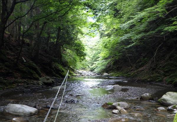 愛知川上流 入渓地点の渓相