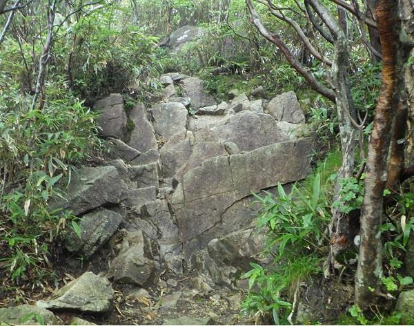 武平峠から御在所岳への登山道