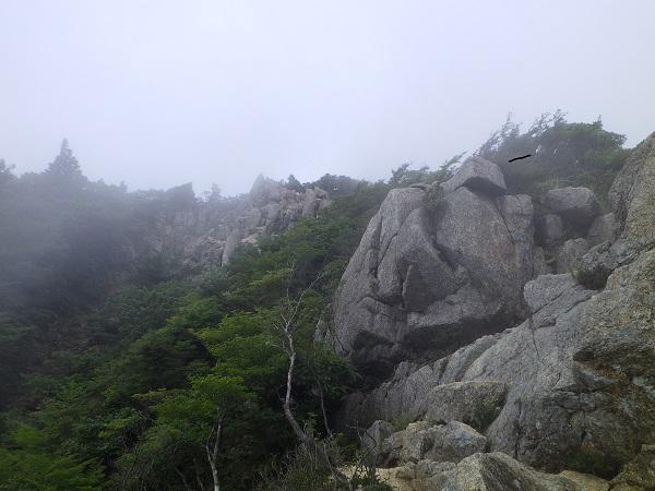 武平峠から御在所岳への登山道2