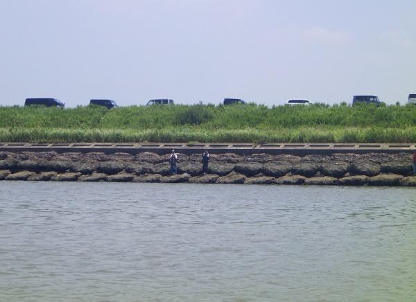 矢作川大橋 上流側