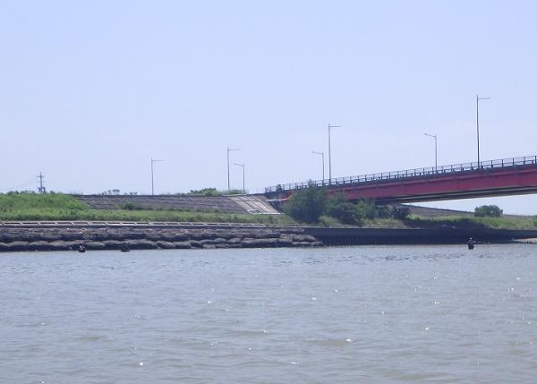矢作川大橋 ウェーディング