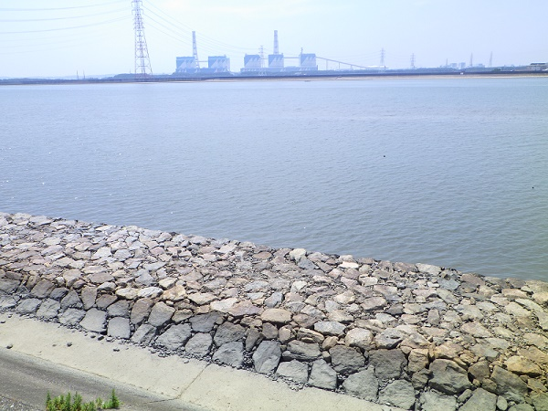 矢作川河口 堤防の下