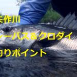 矢作川 シーバス&クロダイ・キビレ釣りポイントの紹介