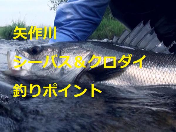 矢作川のシーバス ポイント