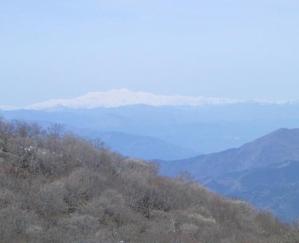 藤原岳から見える白山