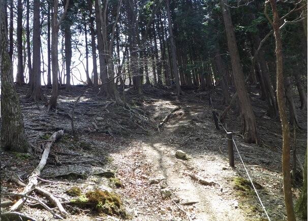 登山道 ロープ 藤原岳
