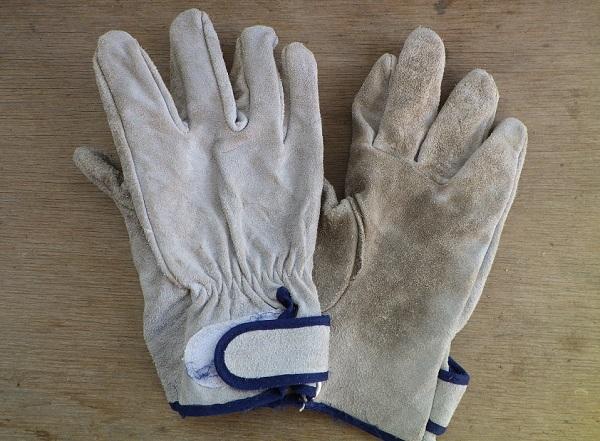 登山 革手袋