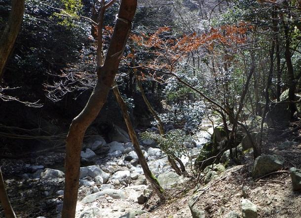 鎌ヶ岳 沢沿いの登山道