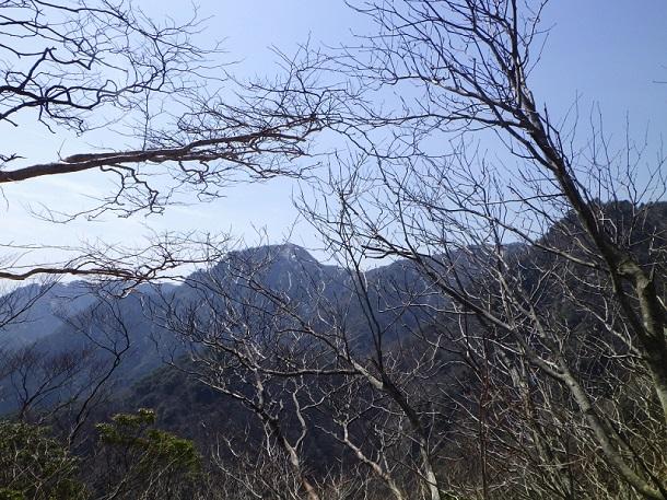 カズラ谷道から見る水沢岳