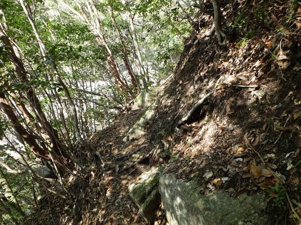 山腹の登山道