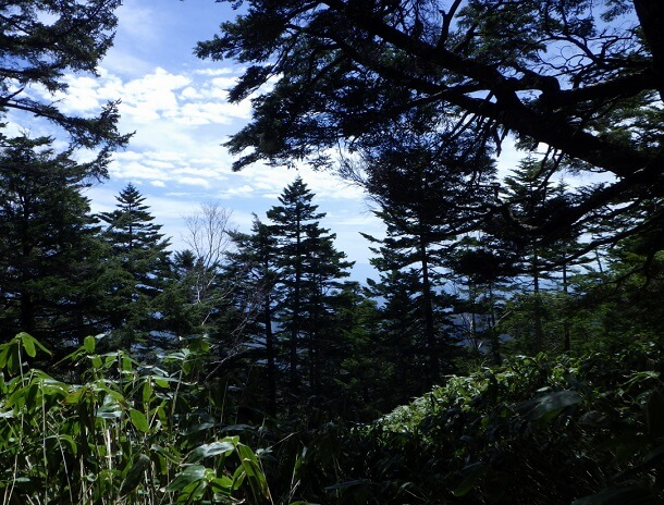 御嶽山 6合目登山道からの眺め