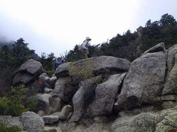 岩の尾根道 中登山道