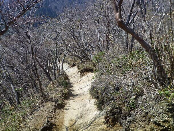 鎌ヶ岳 掘割状の登山道