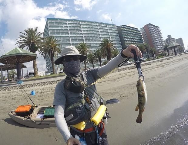 浜名湖 弁天島 フグを釣る