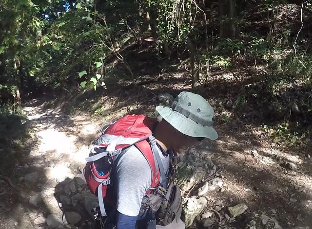 伊吹山1合目までの登山道