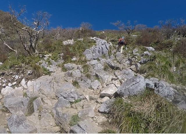 伊吹山8合目からの登山道