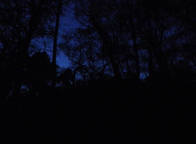 夜明け前の登山道 仙丈ヶ岳