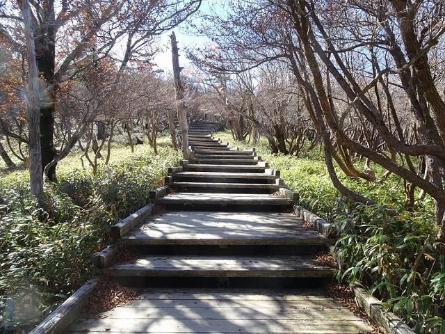 日出ヶ岳から正木峠に続く階段