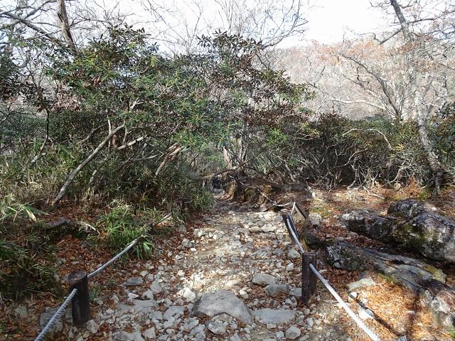 大台ヶ原 シオカラ谷への急降
