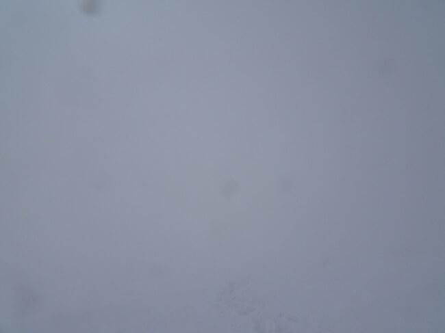 伊吹山頂でホワイトアウト
