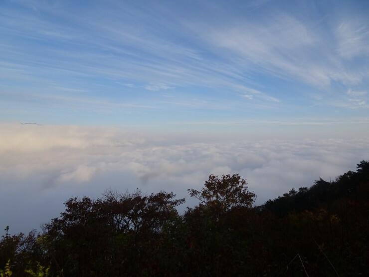 陣馬形山キャンプ場の雲海