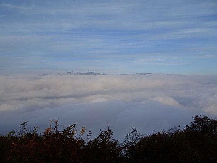 陣馬形山 雲海