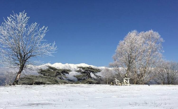 陣馬形山から見る冬の南アルプス