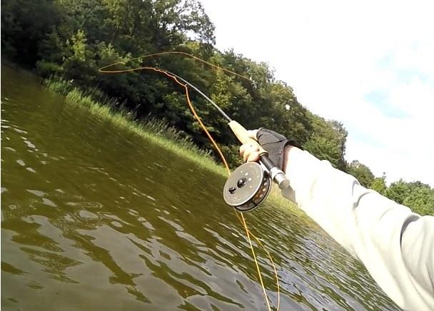 フライフィッシングでバスを釣るためのラインシステム