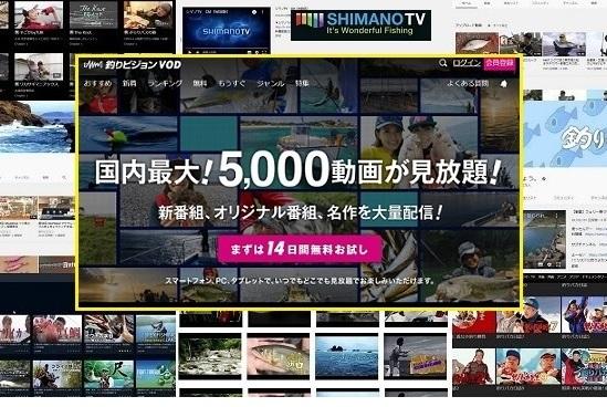 無料で視聴できる人気の釣り番組一覧