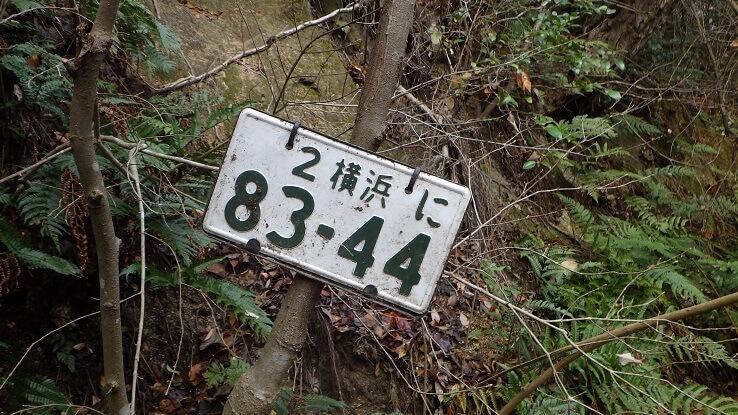 広見林道 レポート2