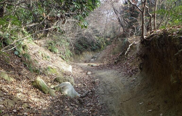 広見林道の現状