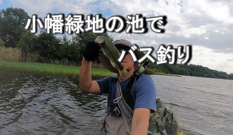 小幡緑地 緑ヶ池でブラックバスを釣る