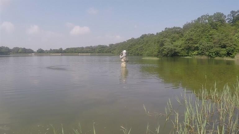 小幡緑地 緑ヶ池